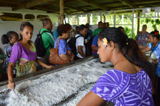 Women in Business (WIBDI), Samoa at the 2nd Pacific Agribusiness Forum