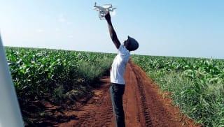 Images taken by drones alert farmers to signs of crop disease