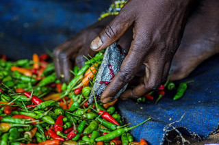 In Zambia, vegetable farmers are accessing a sustainable and reliable market for their chilli and garlic produce
