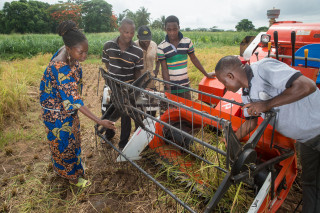 Agribusinesses will be key to creating a more profitable and sustainable agri-food sector for youths with the right skills.