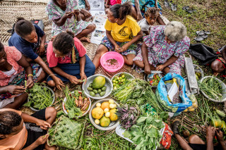 In Vanuatu, communities are learning how to produce climate and disease-resistant crops to increase their resilience to climate change