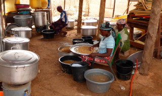 Communities in Niger are helping a local processing company, Sahara Sahel Foods, with the harvesting of indigenous plants to combat malnutrition in the country