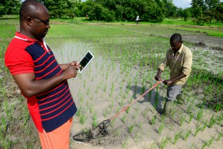 Young farmers are adopting new technology to monitor their crops and enhance productivity