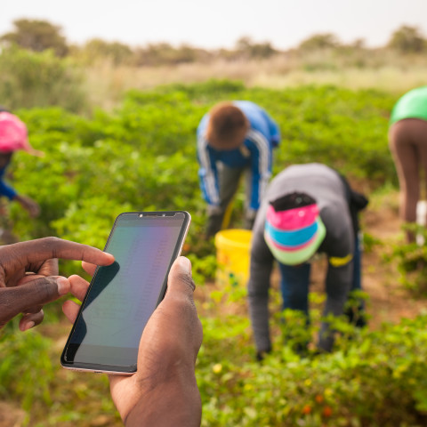 Shaping agricultural policy and outcomes with open data