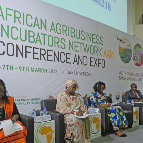 African Agribusiness Incubators Network conference 2018