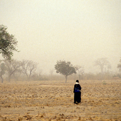 Walking through fields Mali