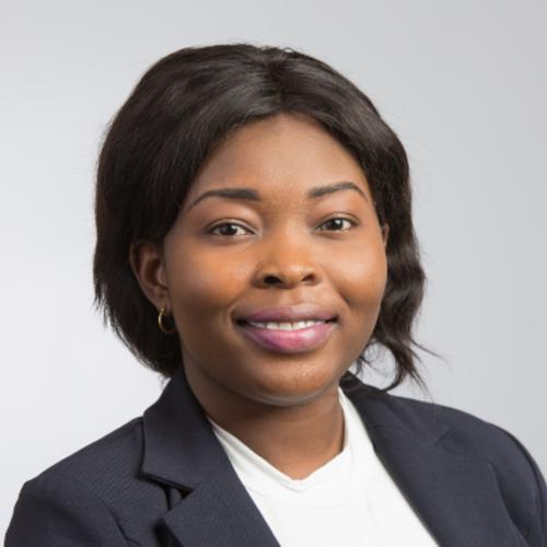 Oluwaseun Adedeji