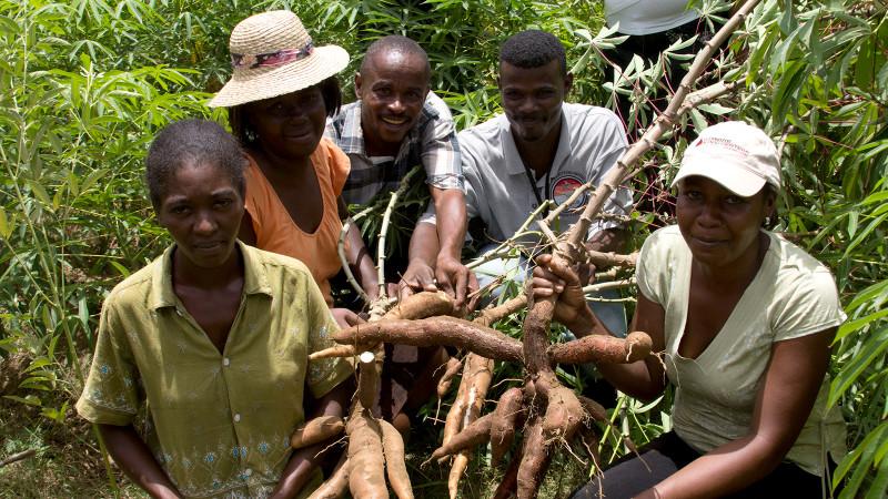 Model gardens for Haiti