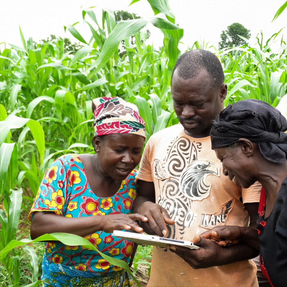 New opportunities for agribusiness in e-commerce