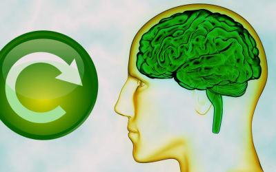 Reboot Your Brain for Biz Success
