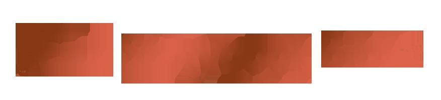 Jesus storybook bible logo