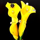 Nozomi Satou
