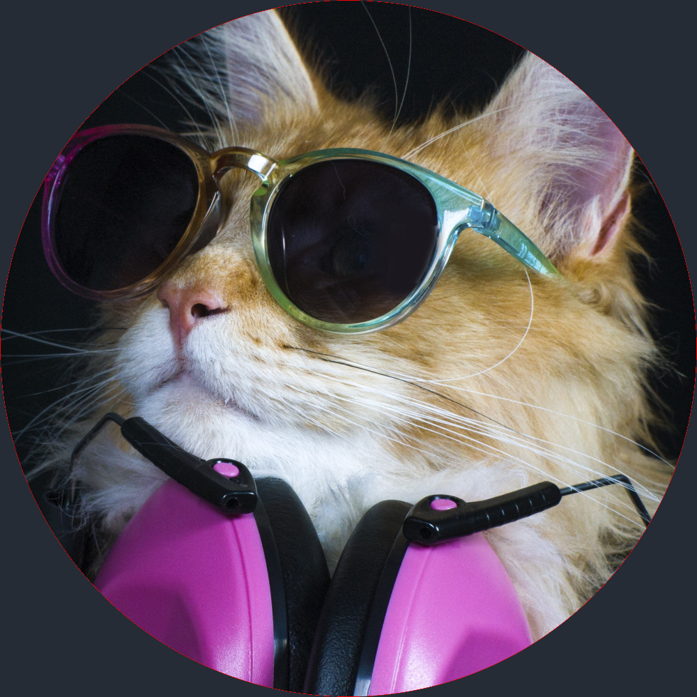 cool dance party cat rocking sun glasses and headphones.