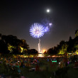 Fireworks during Concerts at the Garden at Fort Worth Botanic Garden