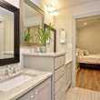 2500 Addison Ave master bathroom