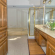 18605 Crownover Ct bathroom