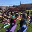 Yoga at Galveston Island Brewing