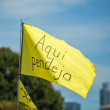 Austin City Limits Festival ACL 2015 Weekend One Best Signs Best Flags Aqui Pendejo