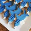 Michael's Cookie Jar shark week cookies
