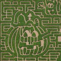 Barton Hill Farms' 4th Annual Fall Festival & Great Pumpkin Maze
