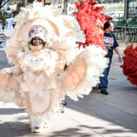 Houston Creole Heritage Festival presents Mardi Gras