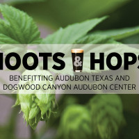 Dogwood Canyon Audubon Center presents Hoots & Hops