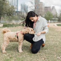 Medici dog-friendly SXSW
