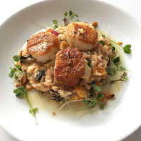 The Grove Wine Bar & Kitchen Scallops