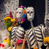 ROCO Connections: Musical and Literary Ofrenda