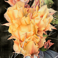 Link & Pin Gallery presents The Desert Painted featuring Watercolors by Erin Cannon