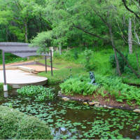 outside terrace and pond at the Umlauf Sculpture Garden