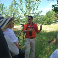 Prairie Walking Tour along Buffalo Bayou Park