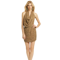 Haute Hippie Gold Dress