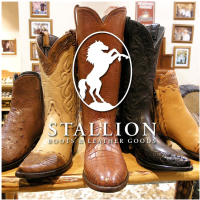 Houston Rodeo Stallion Boots Trunk Show