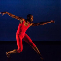 Urban Souls Dance Company presents Blood On The Leaves