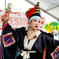 Japan Festival Houston