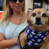 Dallas Pets Alive! presents 2017 Pup Crawl