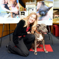 News, Zadoks Holiday Party, Dec. 2015, Christine McWilliams, Cassie the Ambassadog for Friends For Life