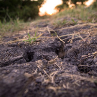 Photo of dry, cracked ground with sunset in the distance