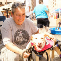 Puppy Mills presents 8th Annual Puppy Mill Awareness Day of Texas