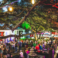 Taste of the Republic: A Texas Culinary Experience