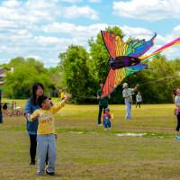 International District presents Kite Festival and Farmers Market