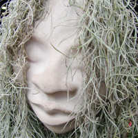 News_Steven Thomson_Jung article Dec. 2009_Spanish moss_on head
