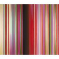 Talley Dunn Gallery presents Tim Bavington: Blow-Up