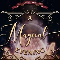 A Magical Evening Gala
