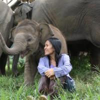 <i>Love & Bananas: An Elephant Story</i>