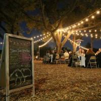 Farm &  Firelight: A Sustainable New Year's Celebration