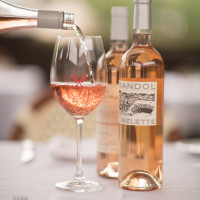 Rosé Patio Party & Tasting