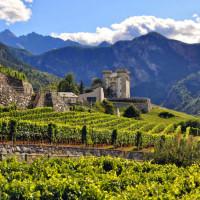 Aosta Valley Region Wine Dinner