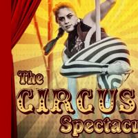 Cirque La Vie's Circus Spectacular
